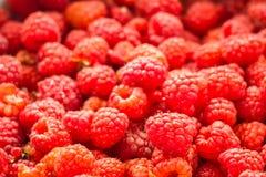 Fresh Raspberries Background. Sweet Fresh Raspberries Close Up Background Stock Photo
