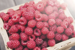 Fresh raspberries basket on brown rustic wood background. Fresh raspberries basket on wood background. Natural ripe organic berries closeup on wooden table Royalty Free Stock Photography