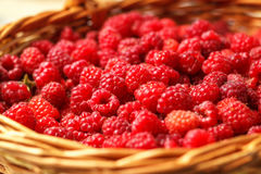 Fresh raspberries in the basket. Food-background. Selective focus Royalty Free Stock Photos