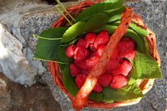 Fresh raspberries in a basket, top view, close-up. On the granite stands a basket with fresh raspberries, a top view, a close-up Stock Photo
