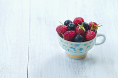 Fresh raspberries and black currants in a cup Royalty Free Stock Photos