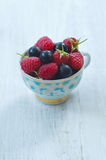 Fresh raspberries and black currants in a cup Stock Photo