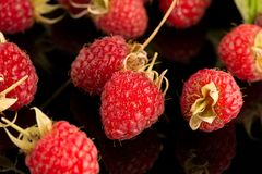 Fresh raspberries. On black reflective background Royalty Free Stock Photo