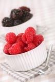 Fresh raspberries and blackberries. Ready for eating Stock Image