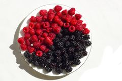 Fresh raspberries and blackberries on plate, symbol of yin and yang. Fresh raspberries and blackberries on plate lined with symbol of yin and yang isolated on Stock Photography