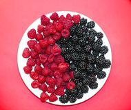 Fresh raspberries and blackberries on plate, symbol of yin and yang. Fresh raspberries and blackberries on plate lined with symbol of yin and yang on red Stock Photography