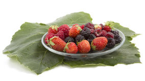 Fresh raspberries blackberries and strawberries. On a grape leaf Royalty Free Stock Photography