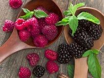 Fresh raspberries and blackberries Stock Photography