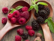 Fresh raspberries and blackberries. Tasteful berry fruit  on the table Stock Photos