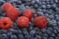 Fresh raspberries and blueberries. Great as a background Stock Photography