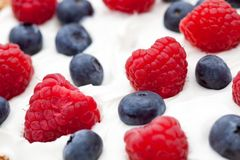 Fresh raspberries and blueberries. In yogurt Stock Images