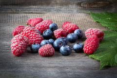 Fresh raspberries and blueberries on wooden table.  Stock Image