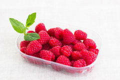 Fresh raspberries in a bowl Stock Photos