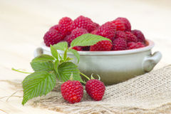 Fresh raspberries. In a bowl Royalty Free Stock Photo