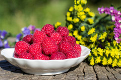 Fresh raspberries in a bowl. On the background of nature and flowers Stock Photos