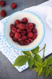 Fresh raspberries in a bowl. In a rustic style Royalty Free Stock Images