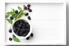 Fresh raspberries bowl in white wooden tray. Bowl of fresh ripe blackberries in white wooden tray, top view Stock Images