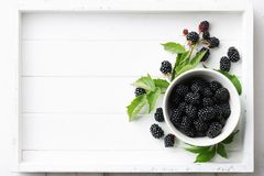 Fresh raspberries bowl in white wooden tray. Bowl of fresh ripe blackberries in white wooden tray, top view Stock Image