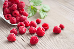 Fresh raspberries in bowl on wooden table. Royalty Free Stock Image