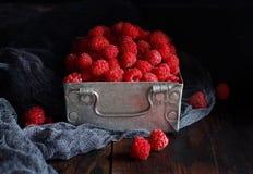 Fresh raspberries in a box. Fresh raspberries in a metal box on a dark background close up Stock Photography