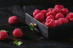Fresh raspberries in box Stock Photos