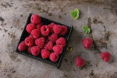 Fresh raspberries in box. Fresh organic wet ripe raspberries in black wood box over old metal background. Top view with space Stock Photo