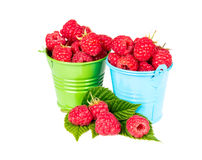 Fresh raspberries in a bucket. Isolated on white background Stock Photo
