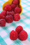 Fresh raspberries on checkered tablecloth, healthy food. Fresh raspberries on checkered tablecloth, concept of healthy food and dessert Stock Images