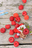 Fresh raspberries with chocolate cubes. Fresh raspberries with ice chocolate and flowers forget-me-on the old wooden table outdoorsselective focus Royalty Free Stock Image