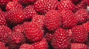 Fresh Raspberries. Close up of fresh raspberries Stock Photography