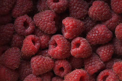 Fresh raspberries. Close-up, Macro, Berry pattern Royalty Free Stock Photo