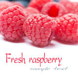 Fresh raspberries close-up, selective focus. Horizontal Stock Photography