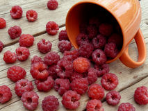 Fresh raspberries. Cup with freshly picked raspberries on wooden background Royalty Free Stock Image
