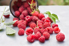 Fresh raspberries in a cup. On old wooden table. Shallow depth of field Stock Photography