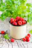 Fresh raspberries in cup. On wooden rustic table and mint Stock Images
