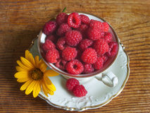 Fresh raspberries, flower and white porcelain set Royalty Free Stock Photo