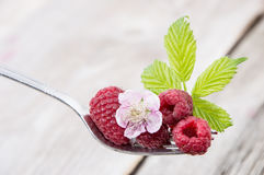 Fresh Raspberries on a fork. Against wooden background Royalty Free Stock Images