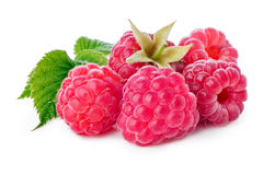 Fresh raspberries. Freshly picked raspberries on white. Large depth of field Stock Images
