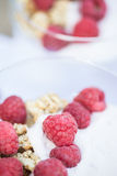 Fresh raspberries granola and yoghurt breakfast. Breakfast of fresh raspberries and yoghurt Stock Image