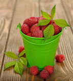 Fresh raspberries. In green bucket on brown background Royalty Free Stock Photos