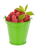 Fresh raspberries. In green bucket on white background Stock Photography