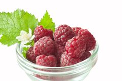 Fresh raspberries with green leaves. Raspberry with green leaf isolated on white background Stock Photo