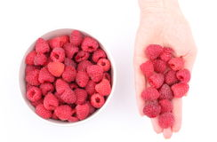 Fresh raspberries in hand of woman and bowl on a white background. Hand of woman with fresh raspberries and raspberries in bowl. Isolated on white background Stock Photos