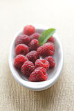 Fresh raspberries Stock Photography