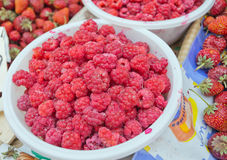 Fresh raspberries. Image of many fresh raspberries, made in the market for sale Royalty Free Stock Images