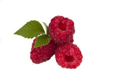 Fresh raspberries isolated. On white background Royalty Free Stock Images