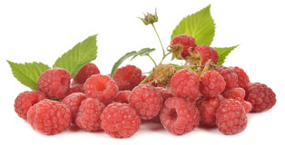 Fresh raspberries. Isolated on white background Royalty Free Stock Images