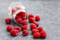 Fresh raspberries. In jar on stone background Stock Images