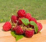 Fresh raspberries. Fresh juicy  raspberries Stock Images