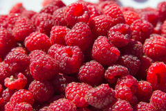 Fresh raspberries. Fresh juicy sweet raspberries is lying in the sun royalty free stock photography